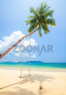 tropical island beach with coconut palm trees and swing