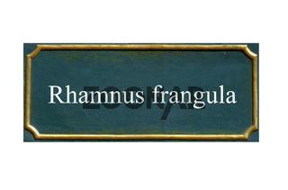 schild faulbaum, rhamnus frangula