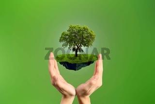 Environement conservation