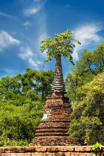 Ancient temple ruins. Ayutthaya, Thailand