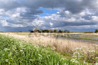 Dutch windmill and wildflowers by river