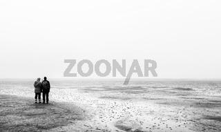 Nebel im Wattenmeer