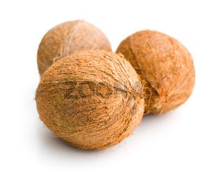 three whole coconuts