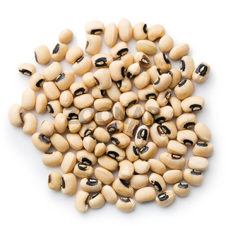 uncooked beans