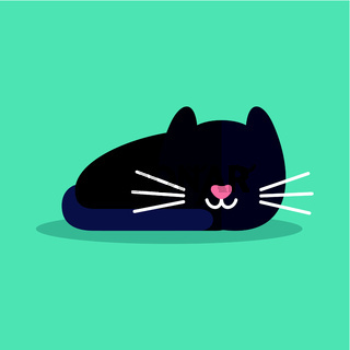 Cat is sleeping