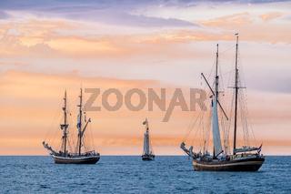Segelschiffe auf der Hansesail