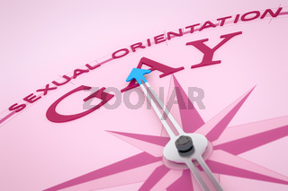 Compass Sexual Orientation