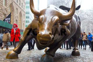 Charging Bull in Lower Manhattan, NY.