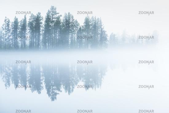 Morgendaemmerung an einem Waldsee, Lappland