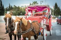 Pferdekutsche, Urlaub, Tunesien