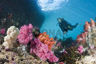 Taucher und buntes Korallenriff, Indonesien