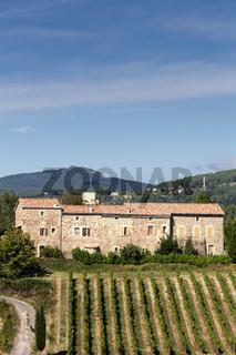 Weinanbau in der Ardeche, Frankreich