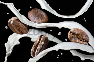 Coffee beans with milk splash isolated on black