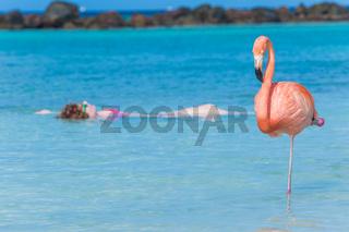 Woman floating on a back in Flamingo beach. Aruba