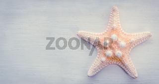Starfish On Wooden Background