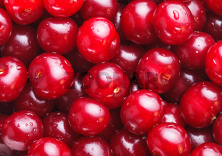 Cherries as a background
