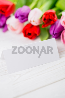Colorful tulips and white card