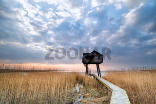 path to wooden observation tower