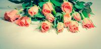 Rosen auf Leder