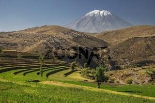 Inca's garden and active volcano Misti, Arequipa, Peru