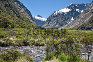 Mountain stream at the Milford Road