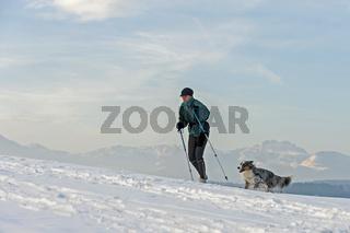 Langlauf mit Hund