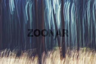 Wald abstrakt, Bewegungsunschärfe