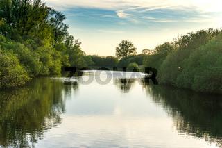 Landschaft am Dümmer See-77