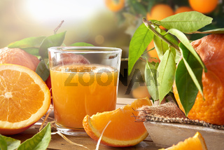 Glass of orange juice on a wooden in field closeup