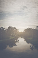River in a Tropical Rain Forest with Retro Style Filter
