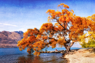 tree by lake wakatipu