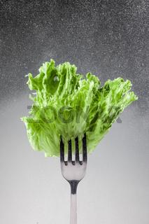 Green lettuce leaves on a fork
