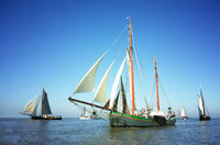 Fleet of traditional sailing ships