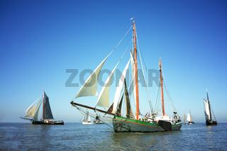 Fleet of traditional sailing ships