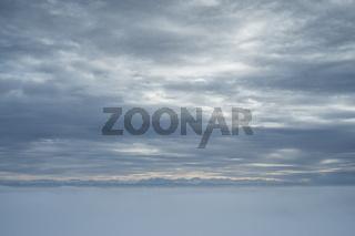 Winterliche Landschaft mit Bodennebel, am Horizont die Schweizer Alpen