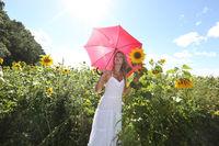 Im Sonnenblumenfeld