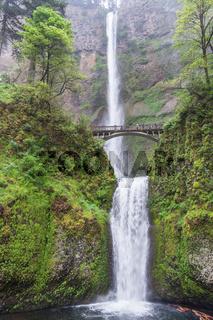 Multnomah Falls Oregon USA