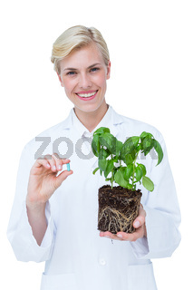 Smiling doctor holing basil plant and blue pill