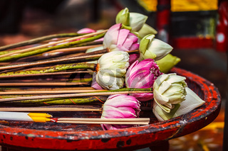 Lotus flowers used as offering in Buddhist temple
