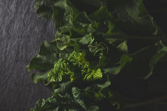 Organic pieplant lying on dark stone