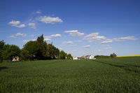 Landschaft bei Ulm-Einsingen41