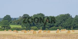 Feld Panorama