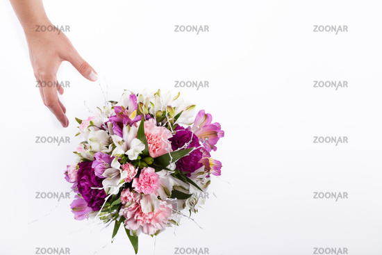 Hand receiving a pastel bouquet from pink and purple gillyflowers and alstroemeria on white