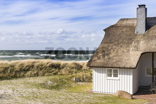 Coast Baltic Sea with dune grass and house