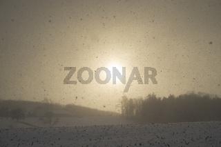 Schneegestöber im winterlichen Hegau