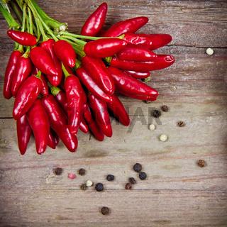 rote chili