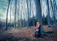 Wald, Herbst, November, Frau