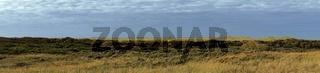 Panorama - Blick über Nordseedünen