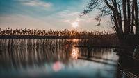 Nationalpark Mecklenburgische Seenplatte