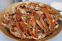 Copper plate with boiled red crawfishes